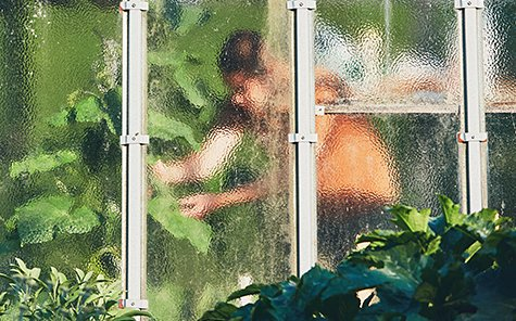 Work on the vegetable garden. Gardener inside of the greenhouse. Stock Photo
