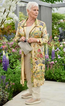 Dame Judi Dench was presented with a sapling elm tree to launch the re-elming of the British Countryside starting this year. Hillier Nurseries, RHS Chelsea Flower Show, London. - Stock Photo